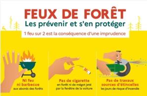Feux de forêts ou de broussailles : Soyons vigileants